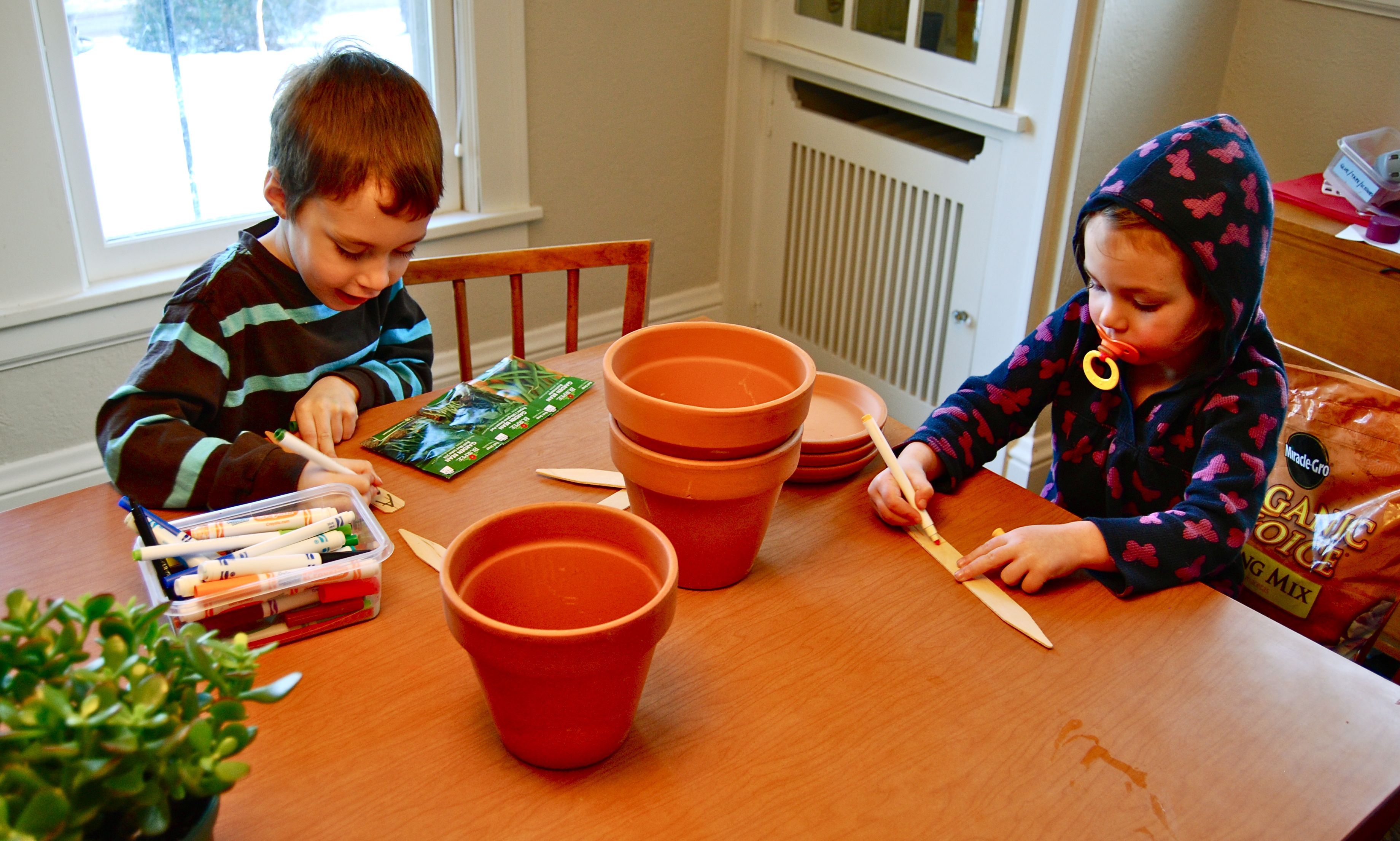 5 books to inspire an indoor gardening project for Indoor gardening lesson