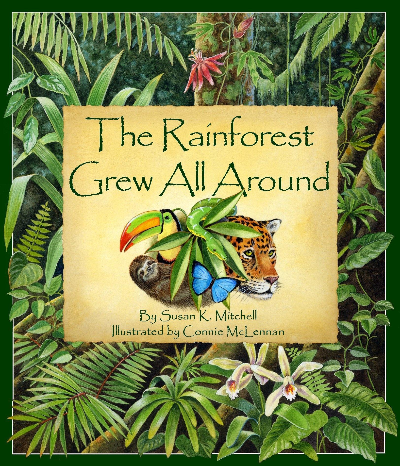10 children u0027s books about south america delightful children u0027s books