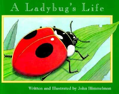A BUGS LIFE BOOKS (12 BOOKS) HARD COVER
