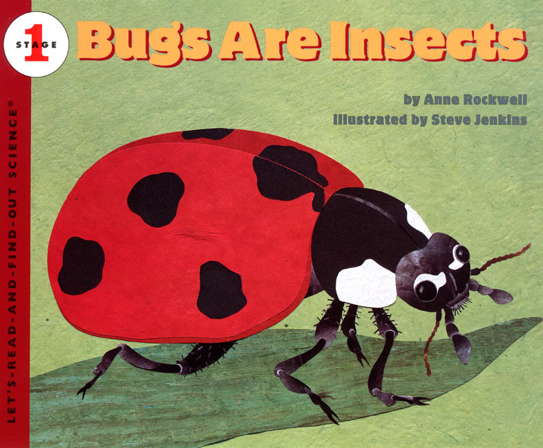 bugs-are-insects.jpg (786×648)