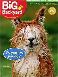 big backyard big backyard is a fantastic magazine for animal
