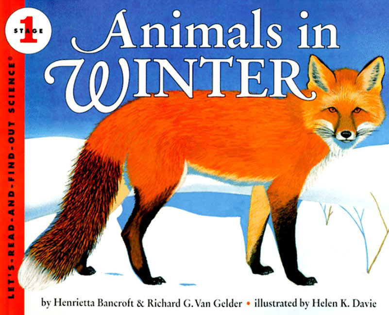 Science Nonfiction Picture Books on Desert Animals Crafts For Preschoolers